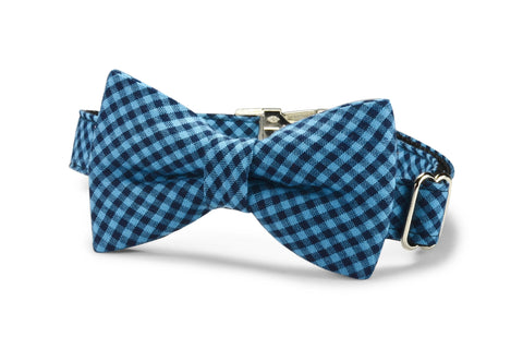 Indigo And Black Gingham Bow Tie Dog Collar