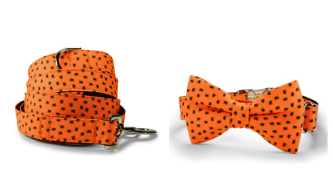 New! Itsy Bitsy Spider Bow Tie Collar and Leash Set