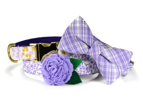 Garden Floral Bloom Dog Collar w/ Lavender Bloom