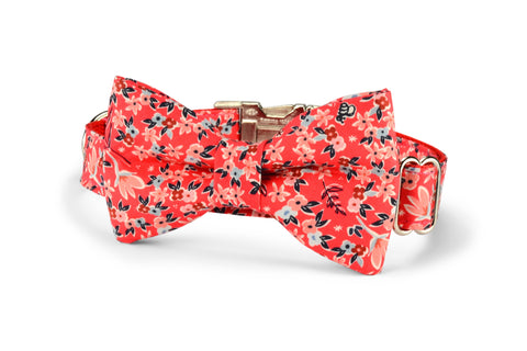 New! Garden Girl Bow Tie Dog Collar