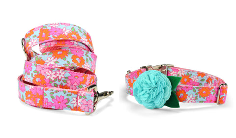 New! Lilly P. Bloom Collar and Leash Set w/ Aqua Bloom