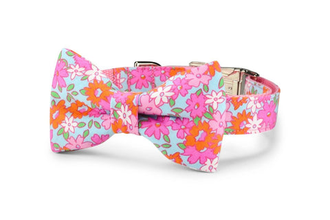 Lilly P. Bow Tie Dog Collar
