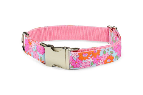 New! Lilly P. Dog Collar