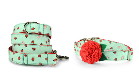 New! Mint Ladybug Bloom Collar and Leash Set w/ Light Red Bloom
