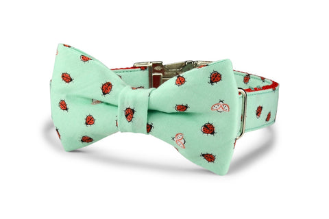 New! Mint Ladybug Bow Tie Dog Collar