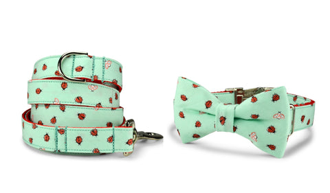 New! Mint Ladybug Bow Tie Collar and Leash Set