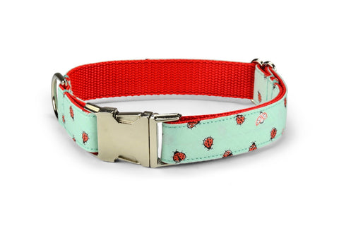 Mint Ladybug Bloom Dog Collar w/ Light Red Bloom