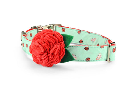 New! Mint Ladybug Bloom Dog Collar w/ Light Red Bloom