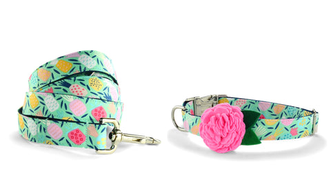 New! Juicy Pineapple Bloom Collar and Leash Set w/ Carnation Bloom