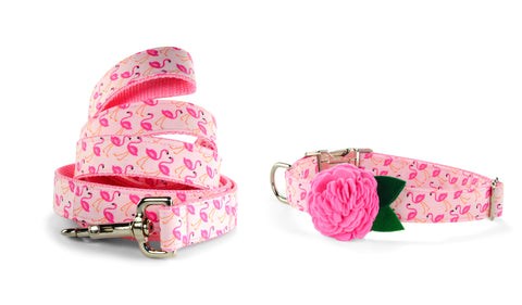New! Pink Flamingo Bloom Collar and Leash Set w/ Carnation Bloom