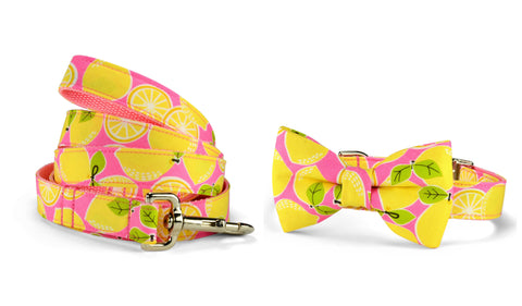 New! Pink Lemonade Bow Tie Collar and Leash Set