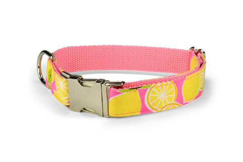 New! Pink Lemonade Dog Collar