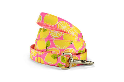 Pink Lemonade Bloom Collar and Leash Set w/ Yellow Bloom