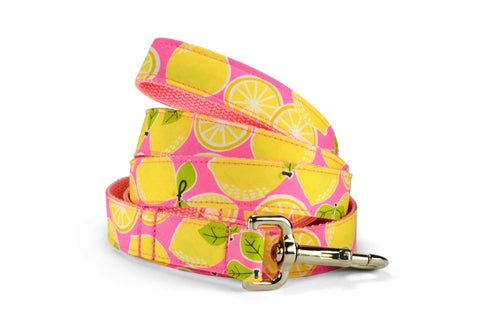 New! Pink Lemonade Dog Leash