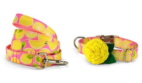 New! Pink Lemonade Bloom Collar and Leash Set w/ Yellow Bloom