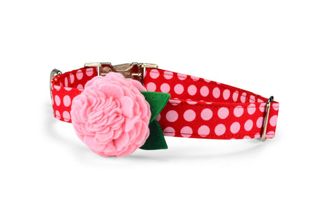 Pink On Red Polka Dot Bloom Dog Collar w/ Blush Bloom