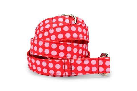 Pink On Red Polka Dot Bloom Collar and Leash Set w/ Blush Bloom