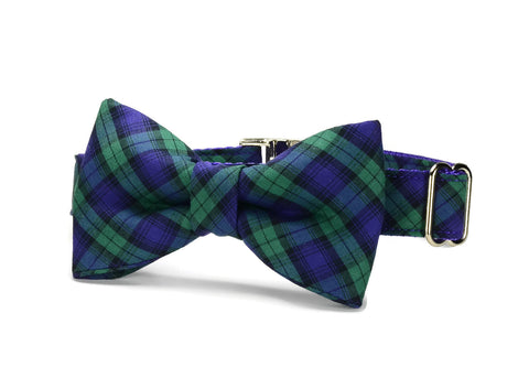 Purple And Green Plaid Bow Tie Dog Collar