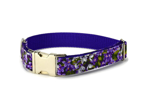 Purple Floral Bloom Dog Collar w/ Orchid Bloom