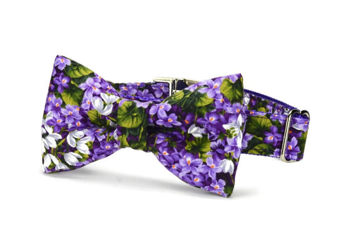 Purple Floral Bow Tie Dog Collar