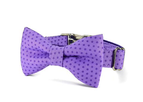 Purple Polka Dot Bow Tie Collar and Leash Set