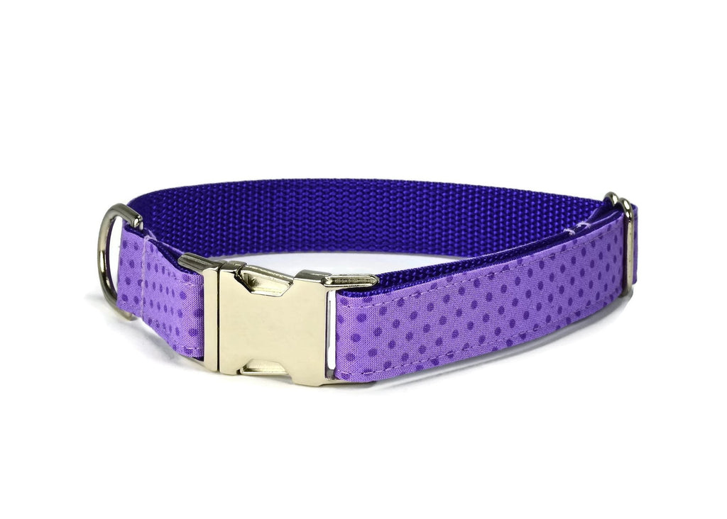 Purple Polka Dot Dog Collar