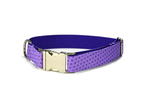 Purple Polka Dot Bow Tie Dog Collar