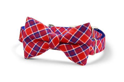 Red And Royal Plaid Bow Tie Dog Collar