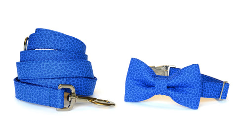 Royal Blue Confetti Bow Tie Collar and Leash Set