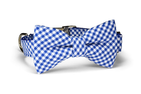 Royal Gingham Bow Tie Dog Collar