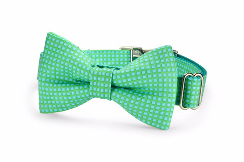 Seaside Criss Cross Bow Tie Dog Collar