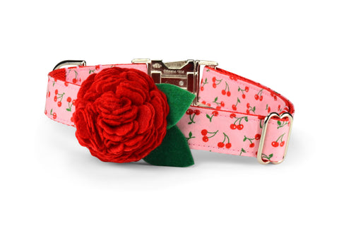 Sweet Cherries Bloom Dog Collar w/ Red Bloom