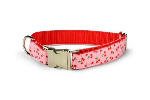 New! Sweet Cherries Dog Collar