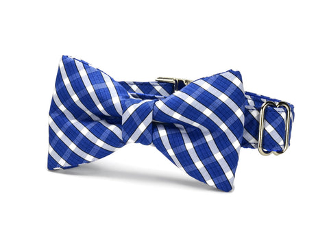 The Brooklyn Plaid Bow Tie Dog Collar