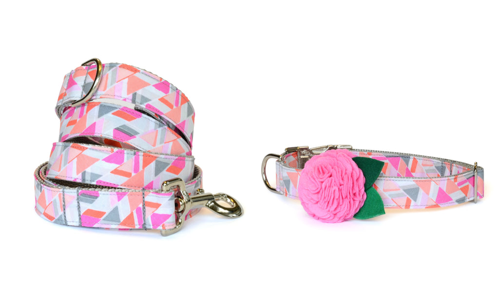 The Emmy Bloom Collar and Leash Set w/ Carnation Bloom