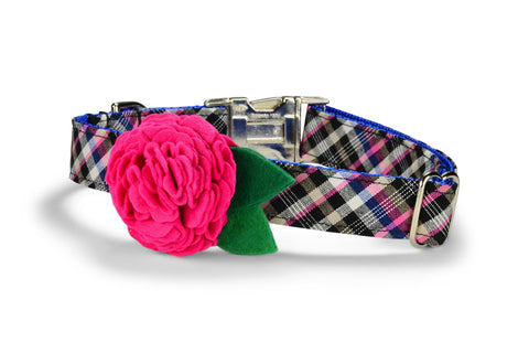 The Fairmont Bloom Collar and Leash Set w/ Fuchsia Bloom