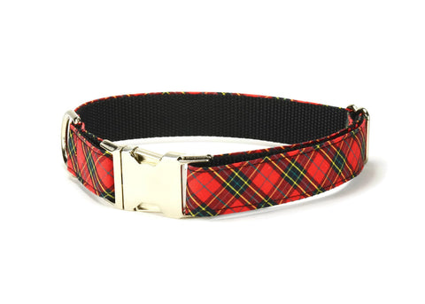 The Mickey Dog Collar