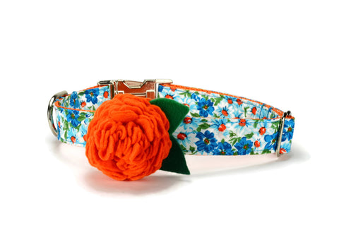 Turquoise Floral Bloom Collar and Leash Set w/ Orange Bloom
