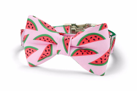 The Watermelon Bow Tie Dog Collar