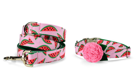 The Watermelon Bloom Collar and Leash Set w/ Carnation Bloom