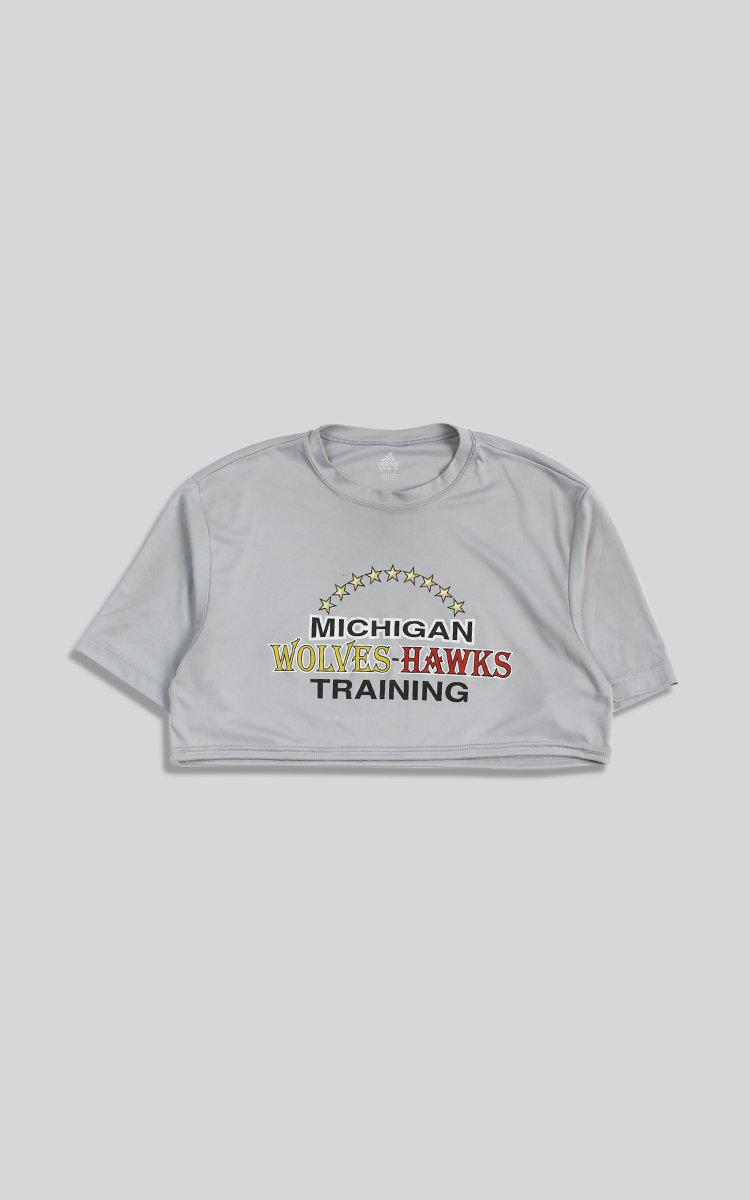 Vintage Michigan Crop Tee