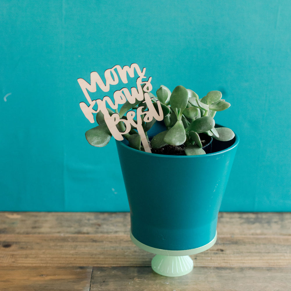 Wooden Love Mom Planter sticks