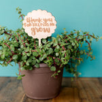 Thank You For Helping Me Grow planter stick for Teachers