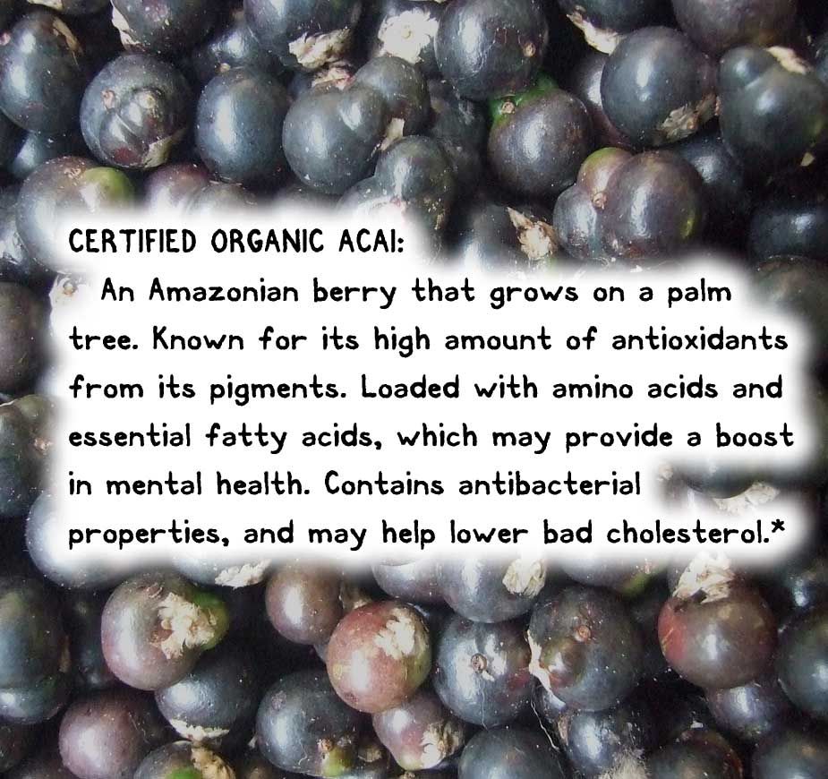 CERTIFIED ORGANIC ACAI: An Amazonian berry that grows on a palm tree. Known for its high amount of antioxidants from its pigments. Loaded with amino acids and essential fatty acids, which may provide a boost in mental health. Contains antibacterial properties, and may help lower bad cholesterol.
