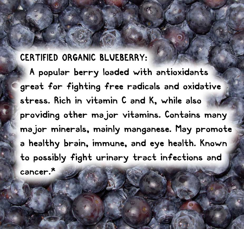 CERTIFIED ORGANIC BLUEBERRY: A popular berry loaded with antioxidants great for fighting free radicals and oxidative stress. Rich in vitamin C and K, while also providing other major vitamins. Contains many major minerals, mainly manganese. May promote a healthy brain, immune, and eye health. Known to possibly fight urinary tract infections and cancer.