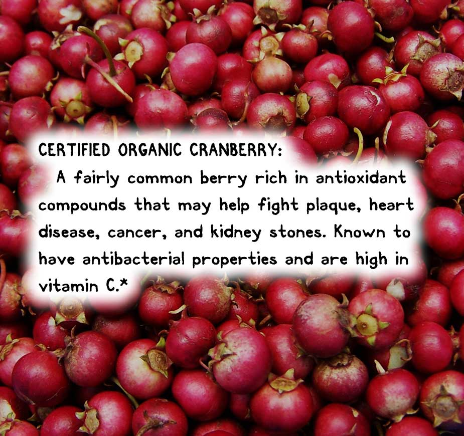 CERTIFIED ORGANIC CRANBERRY: A fairly common berry rich in antioxidant compounds that may help fight plaque, heart disease, cancer, and kidney stones. Known to have antibacterial properties and are high in vitamin C.