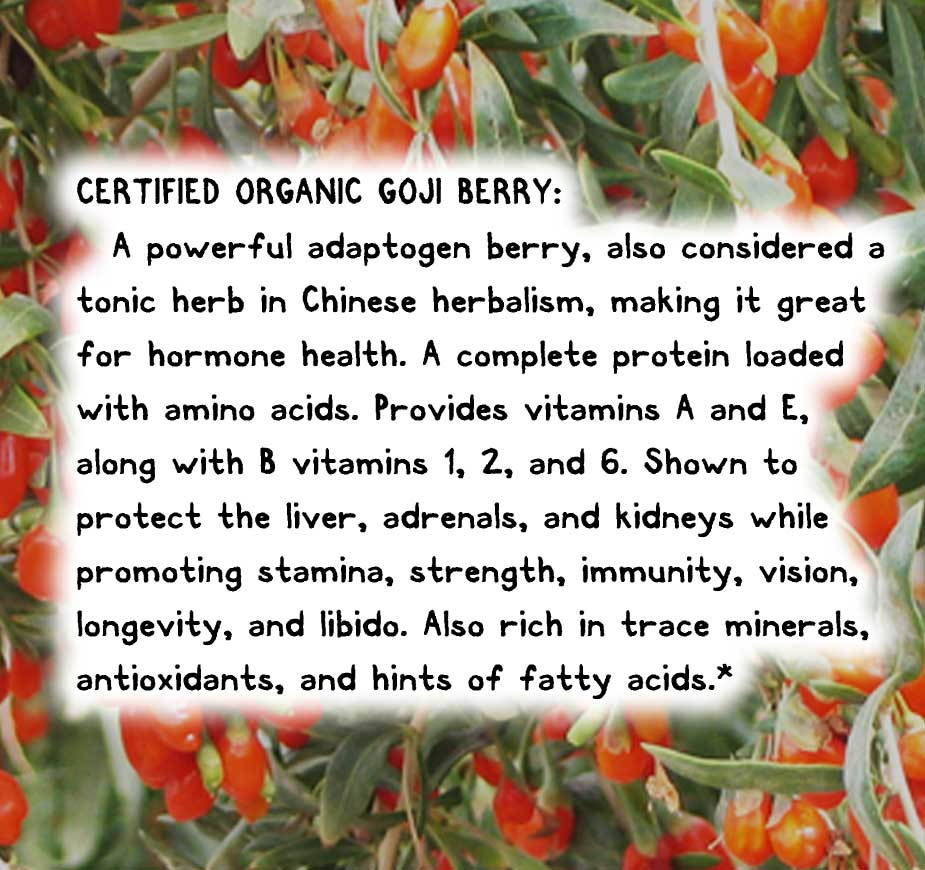 CERTIFIED ORGANIC GOJI BERRY: A powerful adaptogen berry, also considered a tonic herb in Chinese herbalism, making it great for hormone health. A complete protein loaded with amino acids. Provides vitamins A and E, along with B vitamins 1, 2, and 6. Shown to protect the liver, adrenals, and kidneys while promoting stamina, strength, immunity, vision, longevity, and libido. Also rich in trace minerals, antioxidants, and hints of fatty acids.