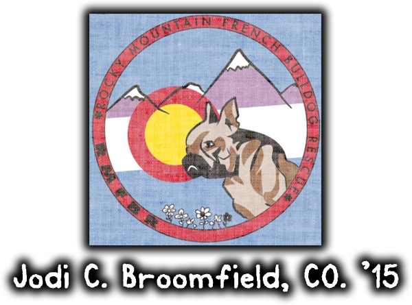 rocky mountain french bulldog rescue jodi cohen broomfield colorado 2015