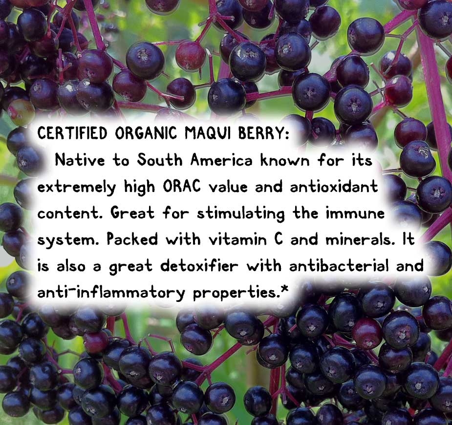 CERTIFIED ORGANIC MAQUI BERRY: Native to South America known for its extremely high ORAC value and antioxidant content. Great for stimulating the immune system. Packed with vitamin C and minerals. It is also a great detoxifier with antibacterial and anti-inflammatory properties.