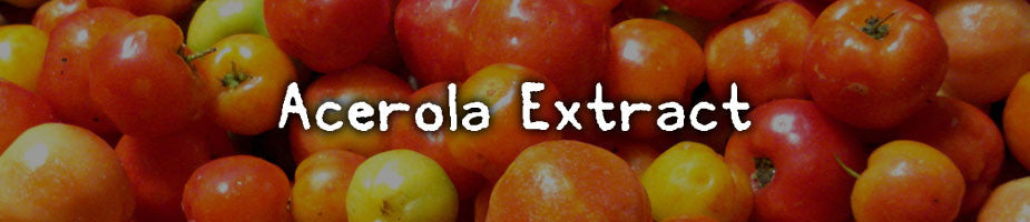 CERTIFIED ORGANIC ACEROLA EXTRACT: One of the highest sources of natural vitamin C there is. Loaded with antioxidants as well as having antifungal and antibacterial properties. Contains major minerals along with vitamin A and several B vitamins.
